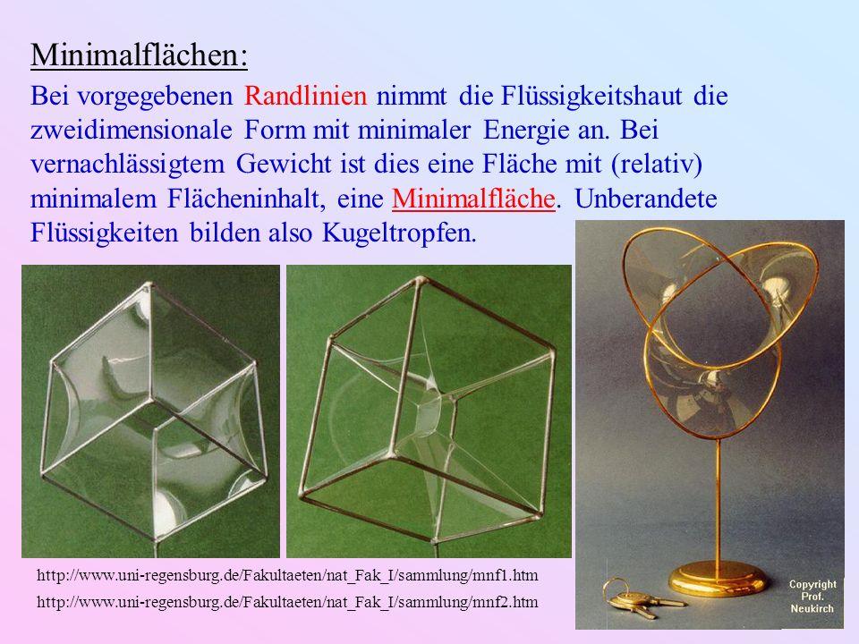 Minimalflächen: Bei vorgegebenen Randlinien nimmt die Flüssigkeitshaut die zweidimensionale Form mit minimaler Energie an. Bei vernachlässigtem Gewich