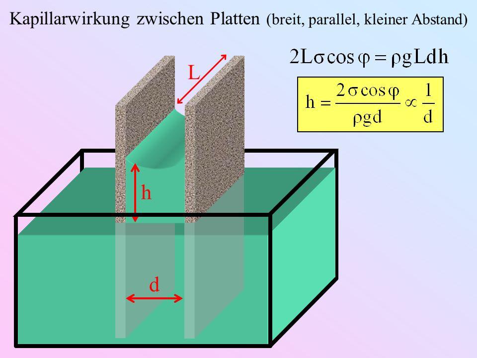 h Kapillarwirkung zwischen Platten (breit, parallel, kleiner Abstand) L d