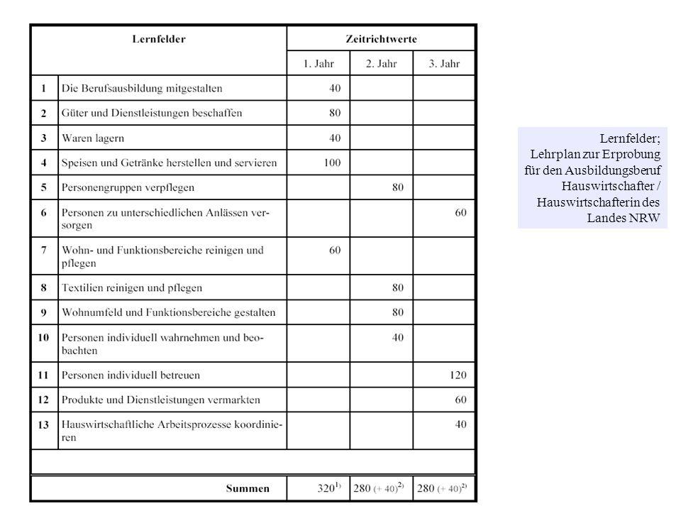 © Prof. Dr. Irmhild Kettschau, SoSe 2008 Lernfelder; Lehrplan zur Erprobung für den Ausbildungsberuf Hauswirtschafter / Hauswirtschafterin des Landes