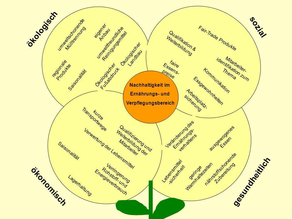 Forschungsschwerpunkt Nachhaltige Ernährung BAP-Seminar 29.05.08 Vorstellung des Projekts Nachhaltigkeit in Bildung und Praxis des Ernährungs- und Verpflegungsbereichs Zielsetzung Nachhaltigkeitskompetenz in den beruflichen Alltag integrieren Nachhaltigkeits- und Ernährungsbildung im Berufsfeld der Ernährung und Hauswirtschaft erweitern anhand von Modellbausteinen Kooperationsnetzwerk zwischen den Projektakteuren aufbauen Transferempfehlungen für das Netzwerk erarbeiten