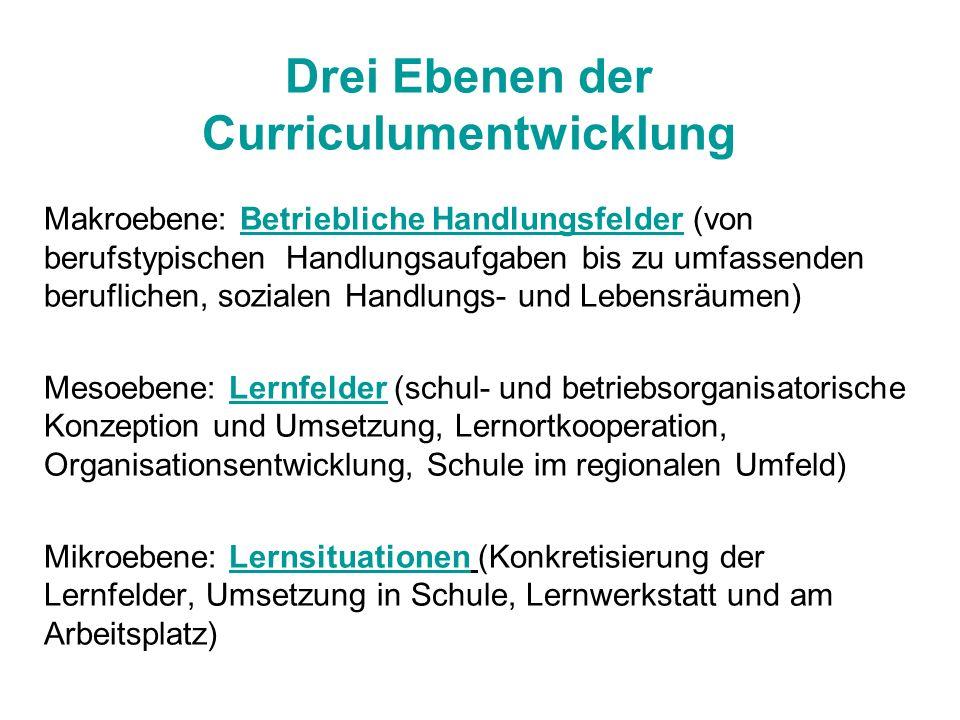 Drei Ebenen der Curriculumentwicklung Makroebene: Betriebliche Handlungsfelder (von berufstypischen Handlungsaufgaben bis zu umfassenden beruflichen,