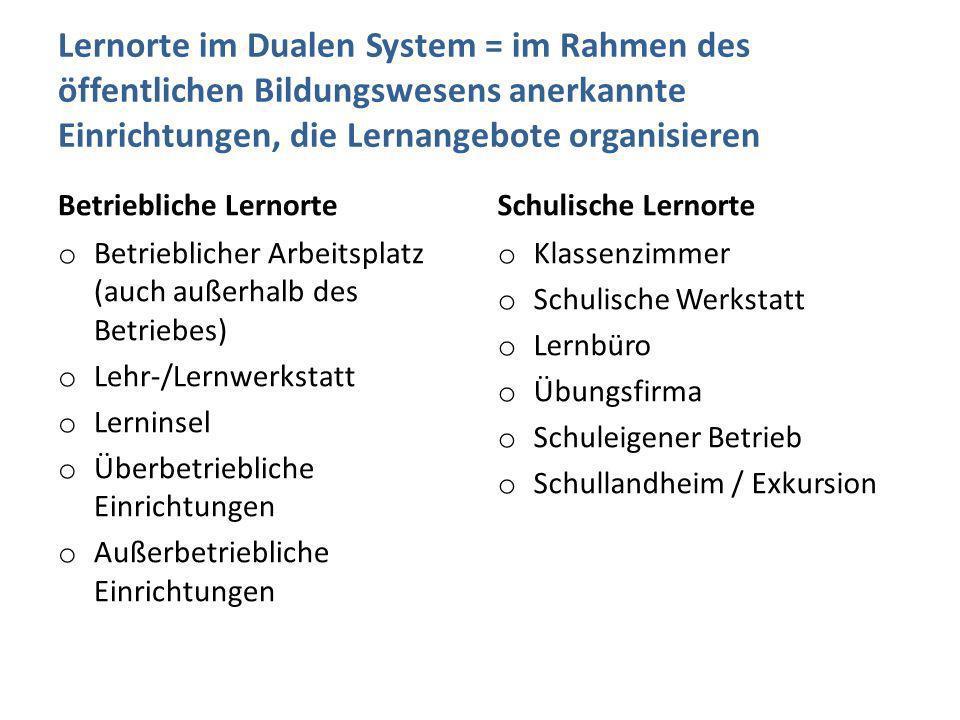 Lernorte im Dualen System = im Rahmen des öffentlichen Bildungswesens anerkannte Einrichtungen, die Lernangebote organisieren Betriebliche Lernorte o