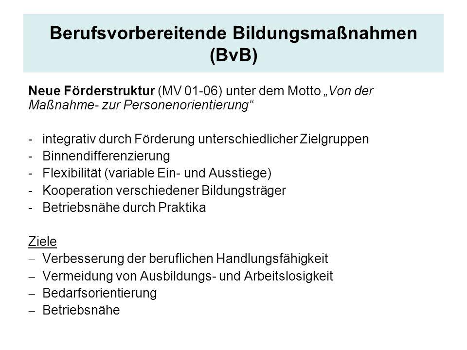 Berufsvorbereitende Bildungsmaßnahmen (BvB) Neue Förderstruktur (MV 01-06) unter dem Motto Von der Maßnahme- zur Personenorientierung -integrativ durc