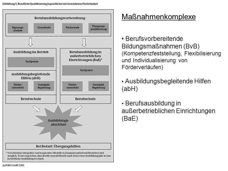 Maßnahmenkomplexe Berufsvorbereitende Bildungsmaßnahmen (BvB) (Kompetenzfeststellung, Flexibilisierung und Individualisierung von Förderverläufen) Aus