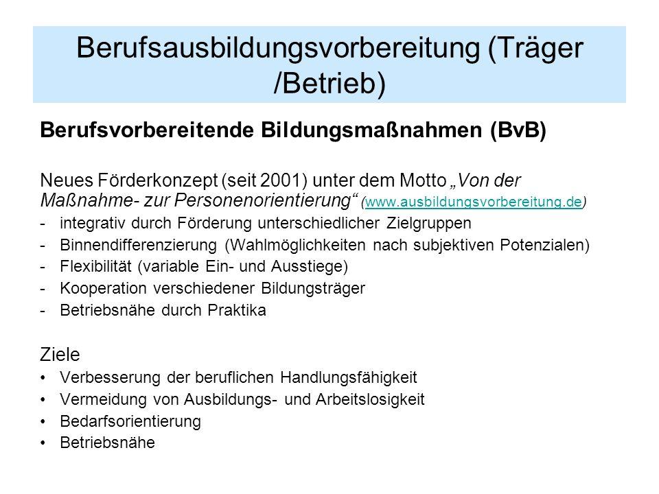 Berufsausbildungsvorbereitung (Träger /Betrieb) Berufsvorbereitende Bildungsmaßnahmen (BvB) Neues Förderkonzept (seit 2001) unter dem Motto Von der Ma