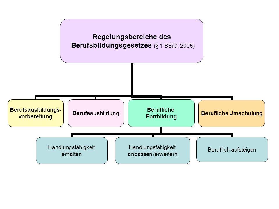 Regelungsbereiche des Berufsbildungsgesetzes (§ 1 BBiG, 2005) Berufsausbildungs- vorbereitung Berufsausbildung Berufliche Fortbildung Handlungsfähigke