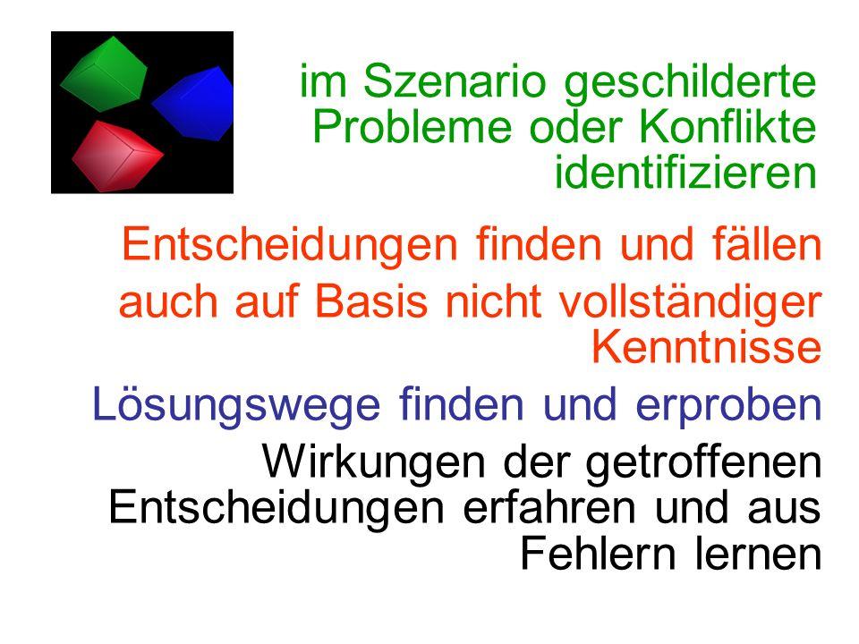 im Szenario geschilderte Probleme oder Konflikte identifizieren Entscheidungen finden und fällen auch auf Basis nicht vollständiger Kenntnisse Lösungs