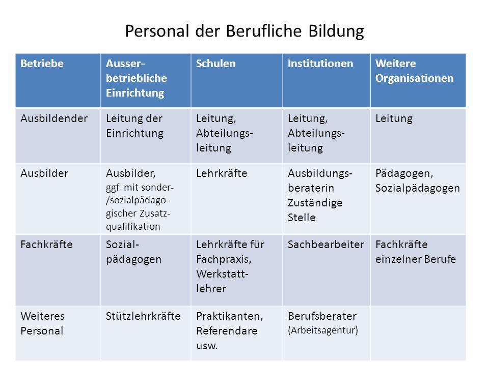 Ausbildungsabbruch: Weitere Gründe Unterforderung (Studienberechtigte) Überforderung (Lernschwächere; => neue Ausbildungsordnungen) Heterogenität der Auszubildenden / der Betriebe