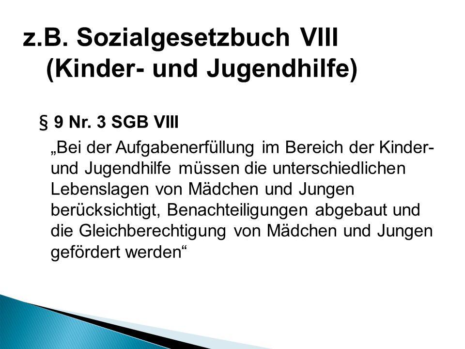 § 9 Nr. 3 SGB VIII Bei der Aufgabenerfüllung im Bereich der Kinder- und Jugendhilfe müssen die unterschiedlichen Lebenslagen von Mädchen und Jungen be