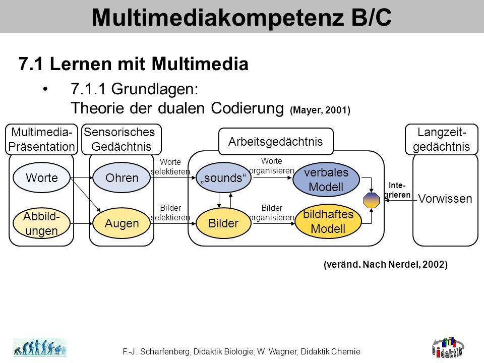 Multimediakompetenz B/C 7.1 Lernen mit Multimedia 7.1.1 Grundlagen: Theorie der dualen Codierung (Mayer, 2001) F.-J. Scharfenberg, Didaktik Biologie;