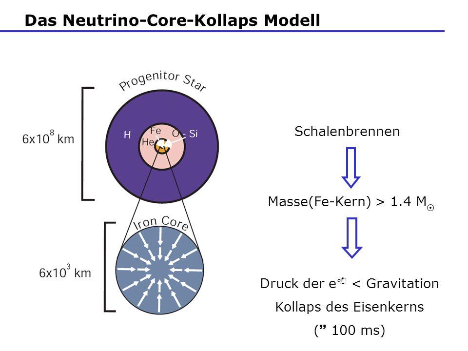 Das Neutrino-Core-Kollaps Modell Druck der e < Gravitation Kollaps des Eisenkerns ( 100 ms) Schalenbrennen Masse(Fe-Kern) > 1.4 M