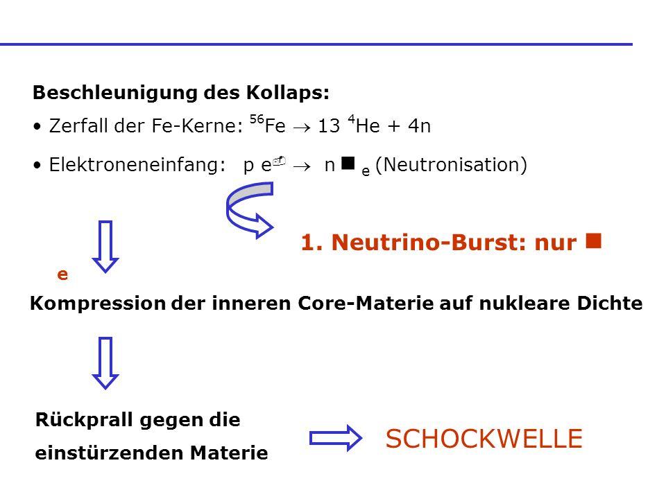 Beschleunigung des Kollaps: Zerfall der Fe-Kerne: 56 Fe 13 4 He + 4n Elektroneneinfang: p e n e (Neutronisation) 1. Neutrino-Burst: nur e Kompression