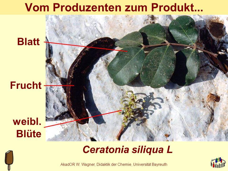 AkadOR W. Wagner, Didaktik der Chemie, Universität Bayreuth Johannisbrotkern-Fabrik Stabilisa- toren- produk- tion durch Ceratonia siliqua L., (Habitu
