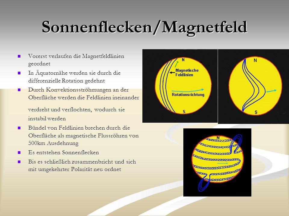 Sonnenflecken/Magnetfeld Vorerst verlaufen die Magnetfeldlinien geordnet Vorerst verlaufen die Magnetfeldlinien geordnet In Äquatornähe werden sie durch die differenzielle Rotation gedehnt In Äquatornähe werden sie durch die differenzielle Rotation gedehnt Durch Konvektionsströhmungen an der Oberfläche werden die Feldlinien ineinander verdreht und verflochten, wodurch sie instabil werden Durch Konvektionsströhmungen an der Oberfläche werden die Feldlinien ineinander verdreht und verflochten, wodurch sie instabil werden Bündel von Feldlinien brechen durch die Oberfläche als magnetische Flussröhren von 500km Ausdehnung Bündel von Feldlinien brechen durch die Oberfläche als magnetische Flussröhren von 500km Ausdehnung Es entstehen Sonnenflecken Es entstehen Sonnenflecken Bis es schließlich zusammenbricht und sich mit umgekehrter Polarität neu ordnet Bis es schließlich zusammenbricht und sich mit umgekehrter Polarität neu ordnet