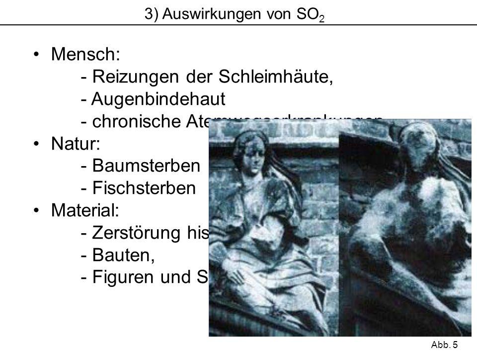 3) Auswirkungen von SO 2 Mensch: - Reizungen der Schleimhäute, - Augenbindehaut - chronische Atemwegserkrankungen Natur: - Baumsterben - Fischsterben