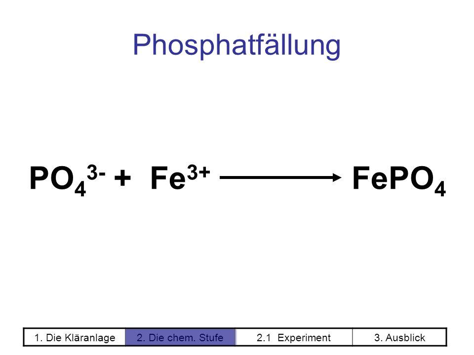 1. Die Kläranlage2. Die chem. Stufe2.1 Experiment3. Ausblick Phosphatfällung PO 4 3- + Fe 3+ FePO 4