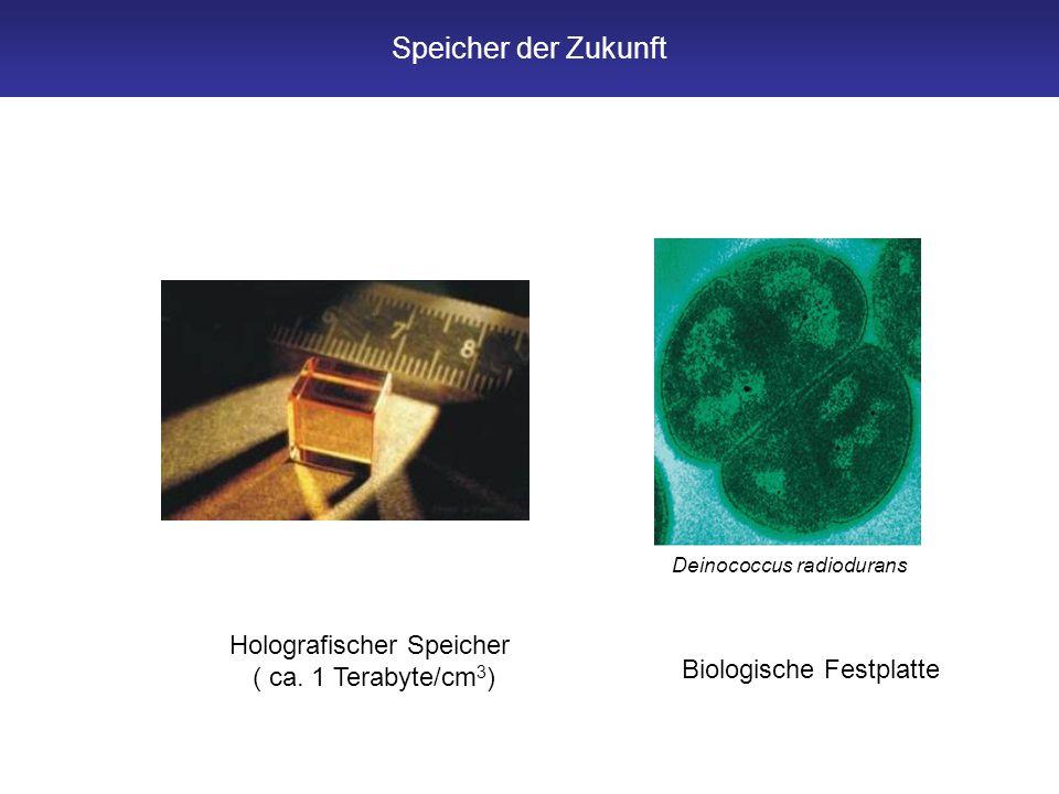 Speicher der Zukunft Holografischer Speicher ( ca. 1 Terabyte/cm 3 ) Biologische Festplatte Deinococcus radiodurans