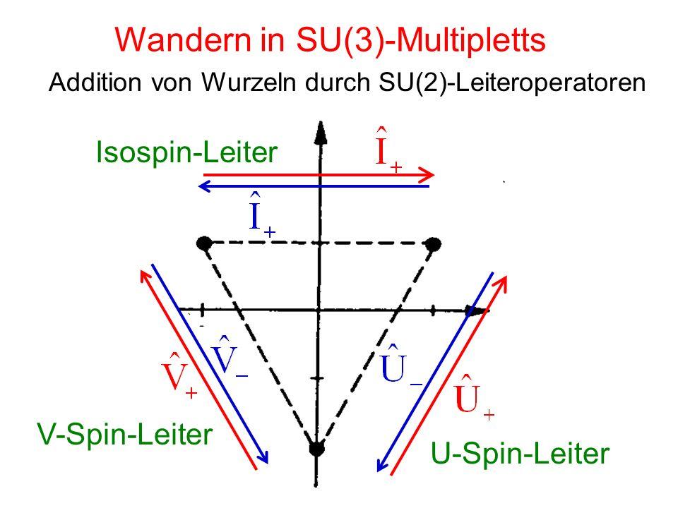 Wandern in SU(3)-Multipletts Addition von Wurzeln durch SU(2)-Leiteroperatoren Isospin-Leiter U-Spin-Leiter V-Spin-Leiter