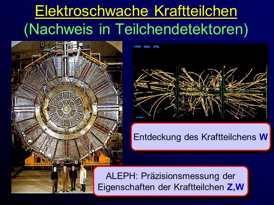 Elektroschwache Kraftteilchen (Nachweis in Teilchendetektoren) Entdeckung des Kraftteilchens W ALEPH: Präzisionsmessung der Eigenschaften der Kraftteilchen Z,W ALEPH: Präzisionsmessung der Eigenschaften der Kraftteilchen Z,W