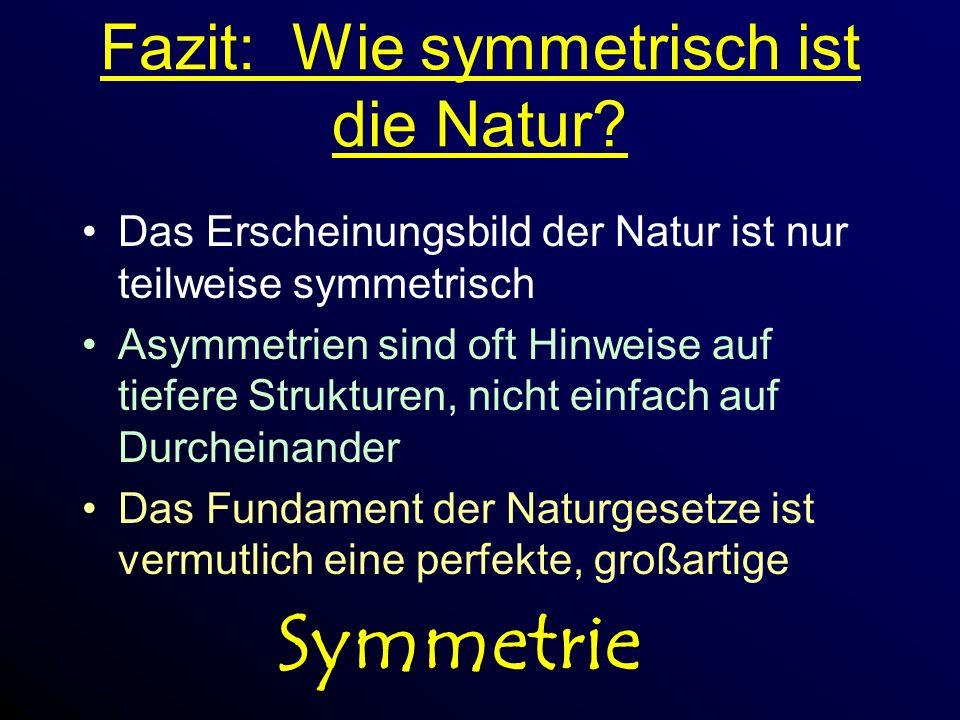 Fazit: Wie symmetrisch ist die Natur.