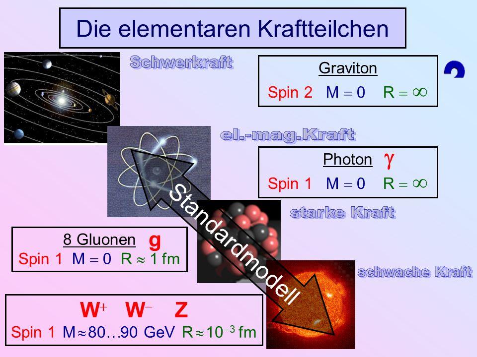 Die elementaren Kraftteilchen Standardmodell Graviton Spin 2 M 0 R Photon Spin 1 M 0 R 8 Gluonen Spin 1 M 0 R 1 fm g W W Z Spin 1 M 80 90 GeV R 10 3 f