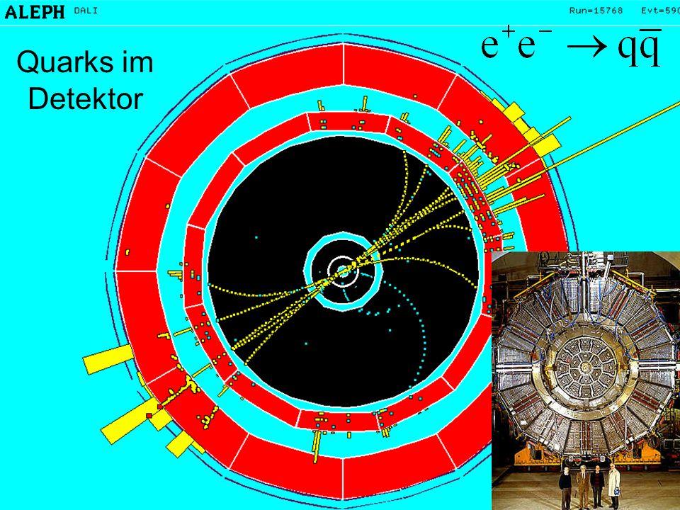 Quarks im Detektor