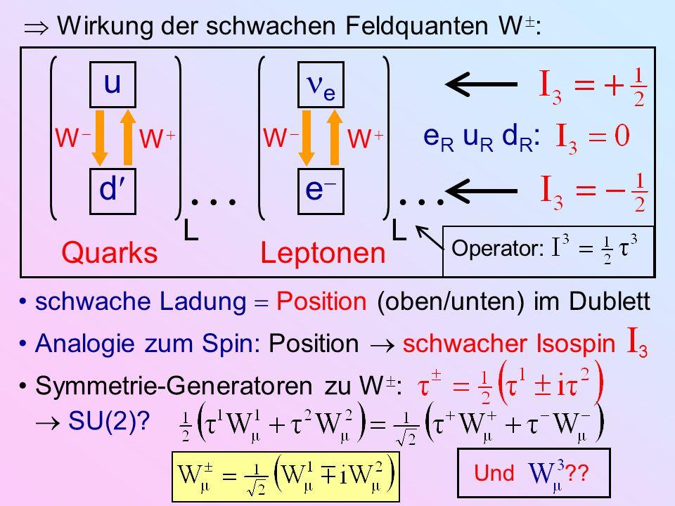 Wirkung der schwachen Feldquanten W : u d e e QuarksLeptonen W W W W schwache Ladung Position (oben/unten) im Dublett Analogie zum Spin: Position schw