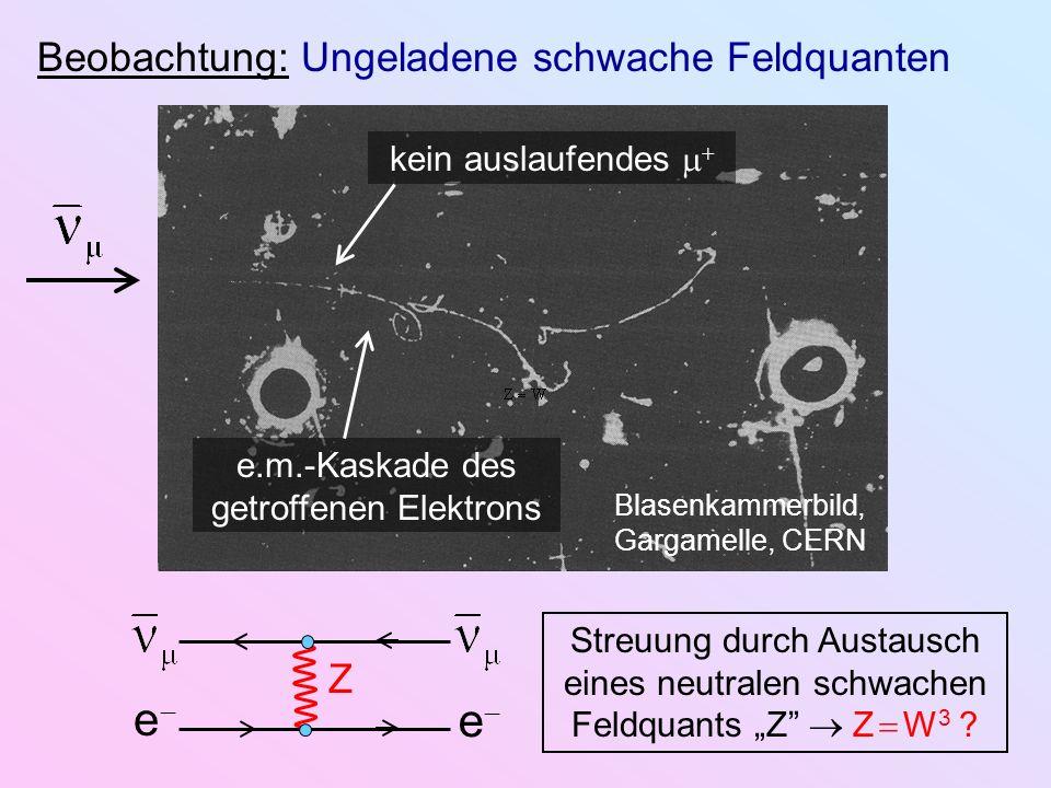 Beobachtung: Ungeladene schwache Feldquanten Blasenkammerbild, Gargamelle, CERN e.m.-Kaskade des getroffenen Elektrons kein auslaufendes e e Z Streuun