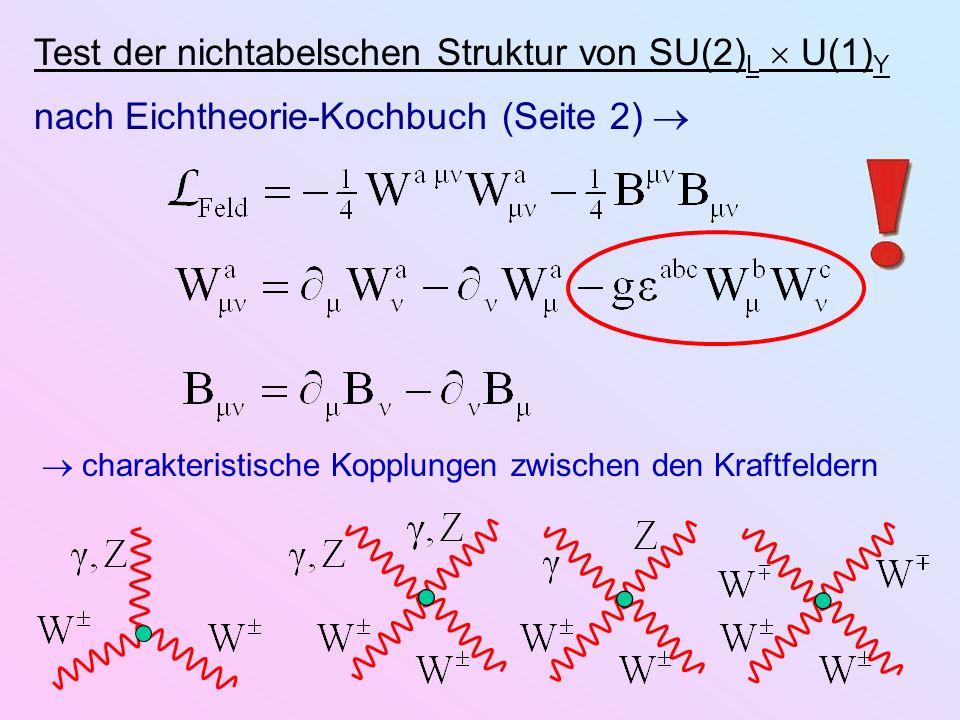 Test der nichtabelschen Struktur von SU(2) L U(1) Y nach Eichtheorie-Kochbuch (Seite 2) charakteristische Kopplungen zwischen den Kraftfeldern