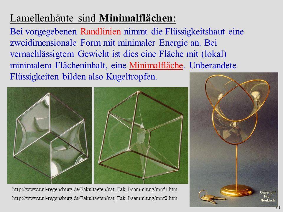 50 Lamellenhäute sind Minimalflächen: Bei vorgegebenen Randlinien nimmt die Flüssigkeitshaut eine zweidimensionale Form mit minimaler Energie an.