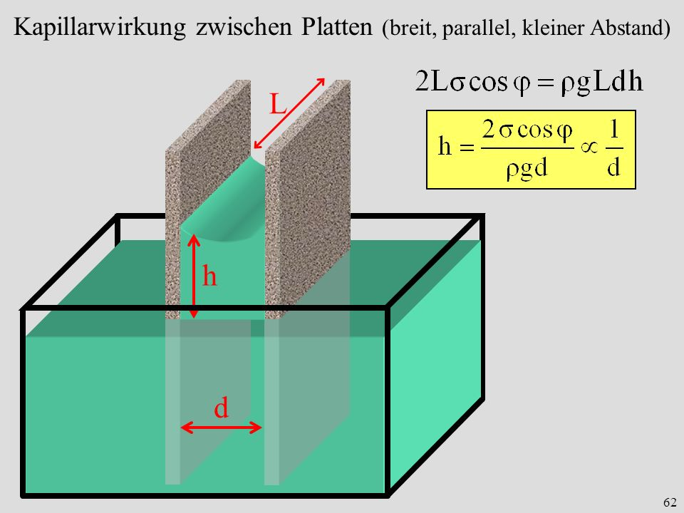 62 h Kapillarwirkung zwischen Platten (breit, parallel, kleiner Abstand) L d