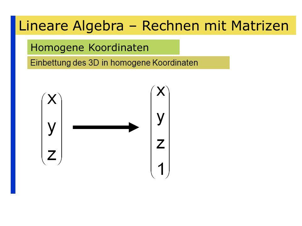 Lineare Algebra – Rechnen mit Matrizen Homogene Koordinaten Einbettung des 3D in homogene Koordinaten