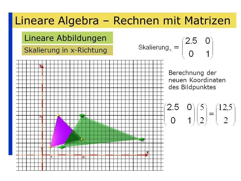 Lineare Algebra – Rechnen mit Matrizen Lineare Abbildungen Skalierung in x-Richtung Berechnung der neuen Koordinaten des Bildpunktes