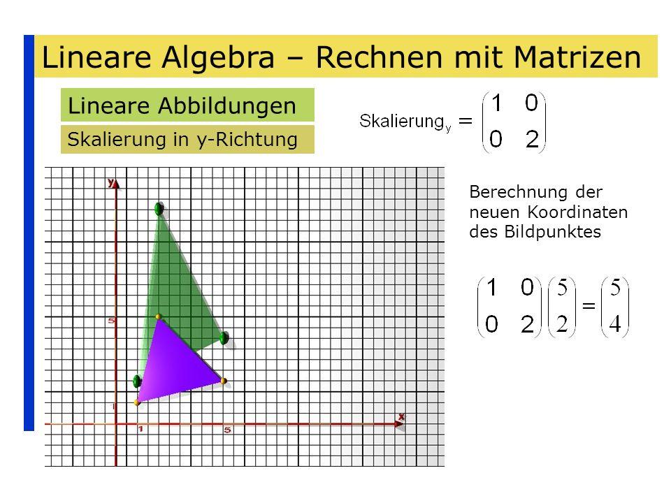 Lineare Algebra – Rechnen mit Matrizen Lineare Abbildungen Skalierung in y-Richtung Berechnung der neuen Koordinaten des Bildpunktes