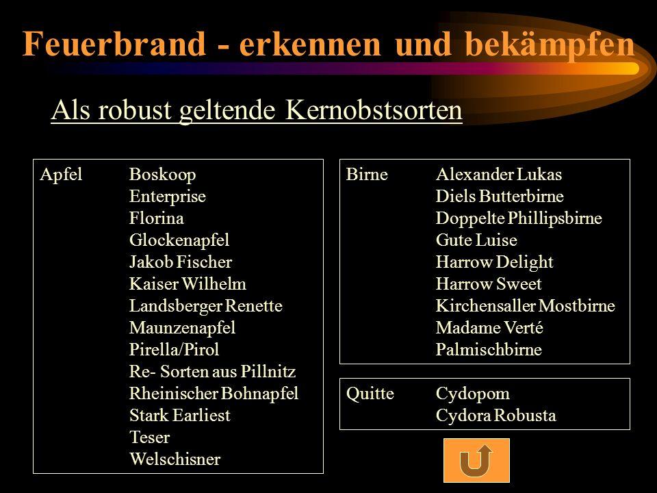Feuerbrand - erkennen und bekämpfen Als robust geltende Kernobstsorten ApfelBoskoop Enterprise Florina Glockenapfel Jakob Fischer Kaiser Wilhelm Lands