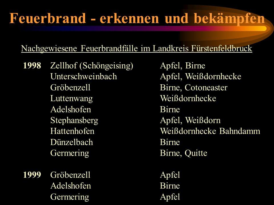Feuerbrand - erkennen und bekämpfen Nachgewiesene Feuerbrandfälle im Landkreis Fürstenfeldbruck 1998Zellhof (Schöngeising)Apfel, Birne Unterschweinbac