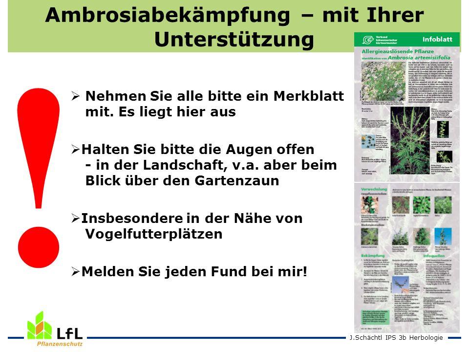 J.Schächtl IPS 3b Herbologie Ambrosiabekämpfung – mit Ihrer Unterstützung Nehmen Sie alle bitte ein Merkblatt mit. Es liegt hier aus Halten Sie bitte