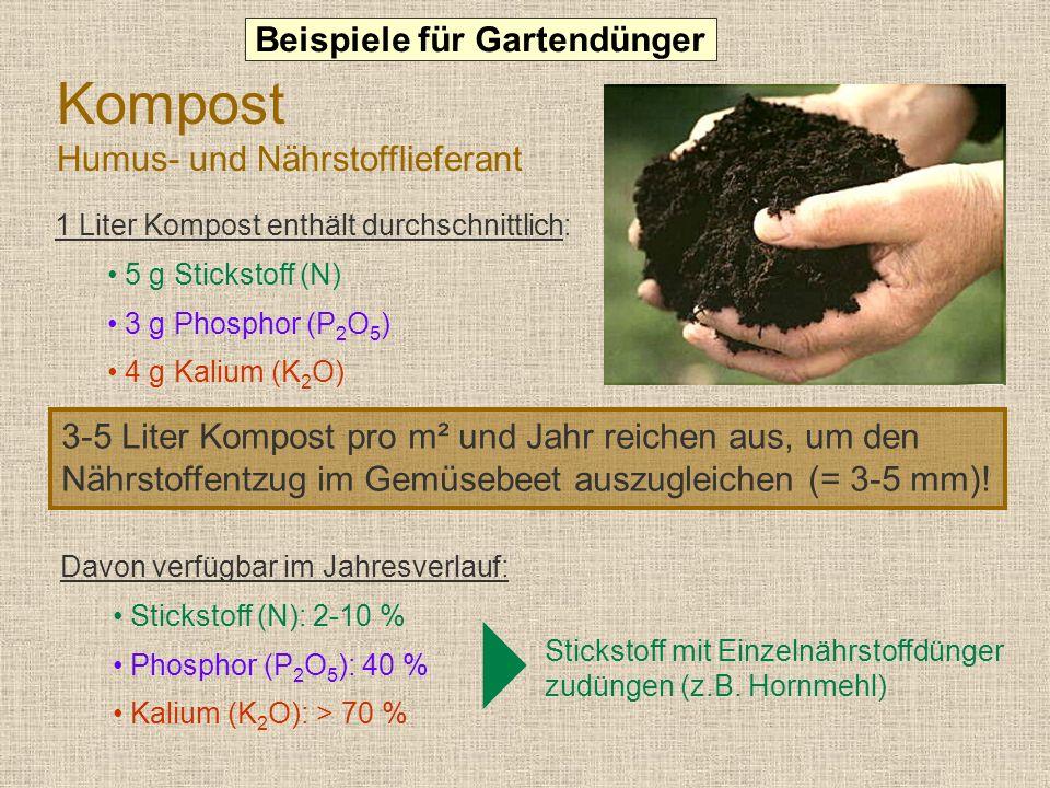 Kompost Humus- und Nährstofflieferant 1 Liter Kompost enthält durchschnittlich: 5 g Stickstoff (N) 3 g Phosphor (P 2 O 5 ) 4 g Kalium (K 2 O) 3-5 Liter Kompost pro m² und Jahr reichen aus, um den Nährstoffentzug im Gemüsebeet auszugleichen (= 3-5 mm).