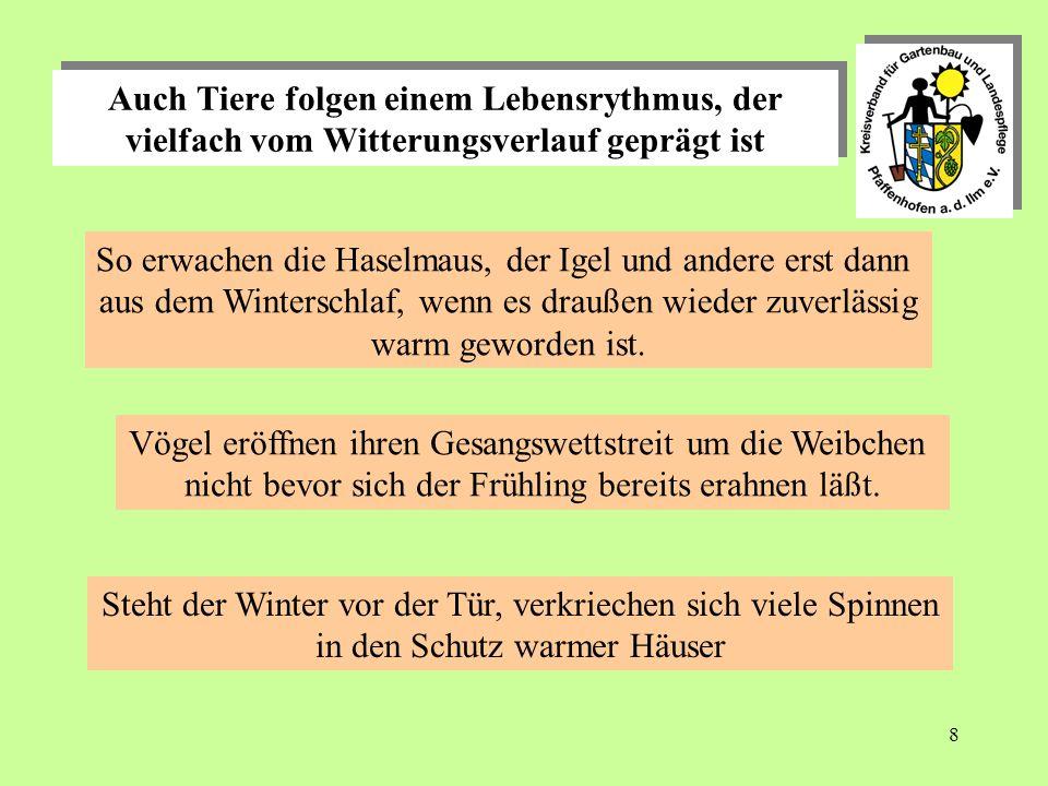 8 Auch Tiere folgen einem Lebensrythmus, der vielfach vom Witterungsverlauf geprägt ist So erwachen die Haselmaus, der Igel und andere erst dann aus dem Winterschlaf, wenn es draußen wieder zuverlässig warm geworden ist.