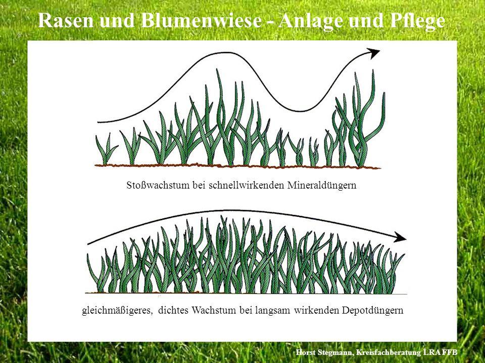 Horst Stegmann, Kreisfachberatung LRA FFB Rasen und Blumenwiese - Anlage und Pflege Stoßwachstum bei schnellwirkenden Mineraldüngern gleichmäßigeres,