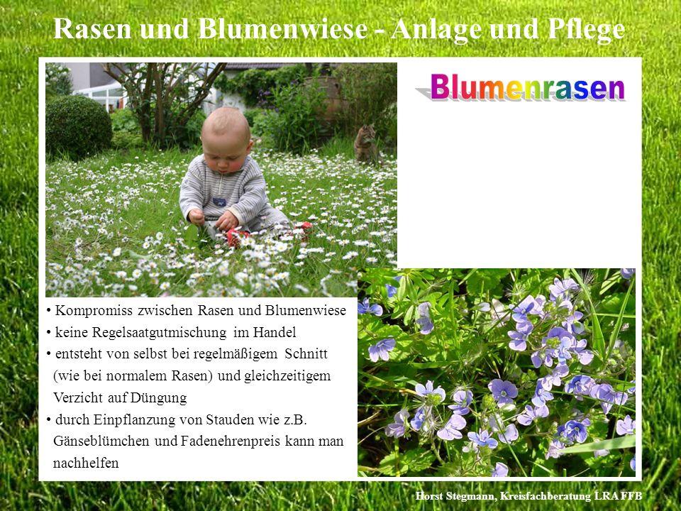 Horst Stegmann, Kreisfachberatung LRA FFB Rasen und Blumenwiese - Anlage und Pflege Kompromiss zwischen Rasen und Blumenwiese keine Regelsaatgutmischu