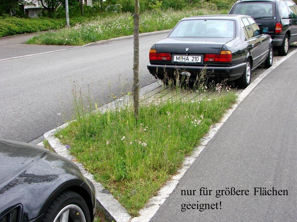 Horst Stegmann, Kreisfachberatung LRA FFB Rasen und Blumenwiese - Anlage und Pflege nur für größere Flächen geeignet!