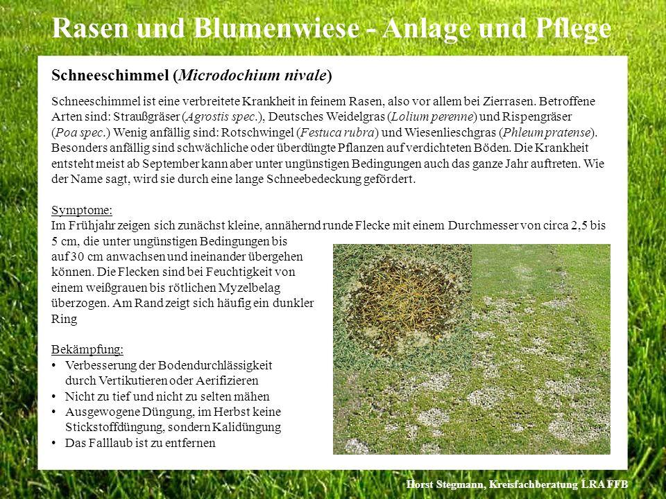 Horst Stegmann, Kreisfachberatung LRA FFB Rasen und Blumenwiese - Anlage und Pflege Schneeschimmel ist eine verbreitete Krankheit in feinem Rasen, als