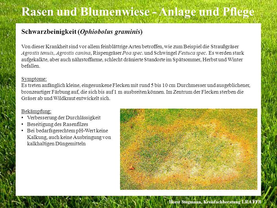Horst Stegmann, Kreisfachberatung LRA FFB Rasen und Blumenwiese - Anlage und Pflege Von dieser Krankheit sind vor allem feinblättrige Arten betroffen,