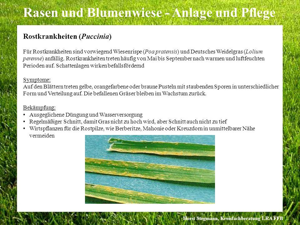 Horst Stegmann, Kreisfachberatung LRA FFB Rasen und Blumenwiese - Anlage und Pflege Für Rostkrankheiten sind vorwiegend Wiesenrispe (Poa pratensis) un