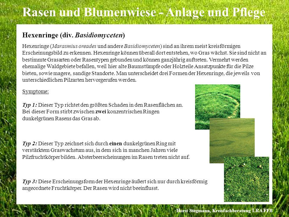 Horst Stegmann, Kreisfachberatung LRA FFB Rasen und Blumenwiese - Anlage und Pflege Typ 2: Dieser Typ zeichnet sich durch einen dunkelgrünen Ring mit