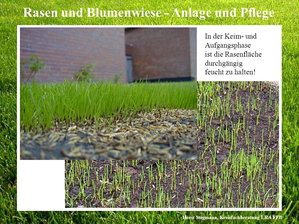 Horst Stegmann, Kreisfachberatung LRA FFB Rasen und Blumenwiese - Anlage und Pflege In der Keim- und Aufgangsphase ist die Rasenfläche durchgängig feu