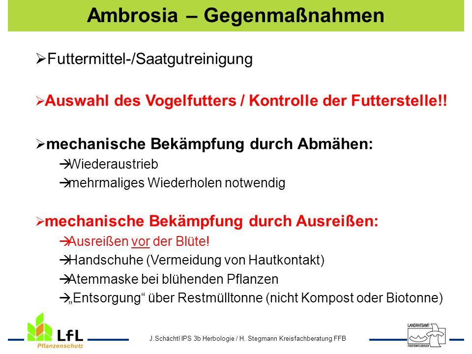 J.Schächtl IPS 3b Herbologie / H. Stegmann Kreisfachberatung FFB Ambrosia – Gegenmaßnahmen Futtermittel-/Saatgutreinigung Auswahl des Vogelfutters / K