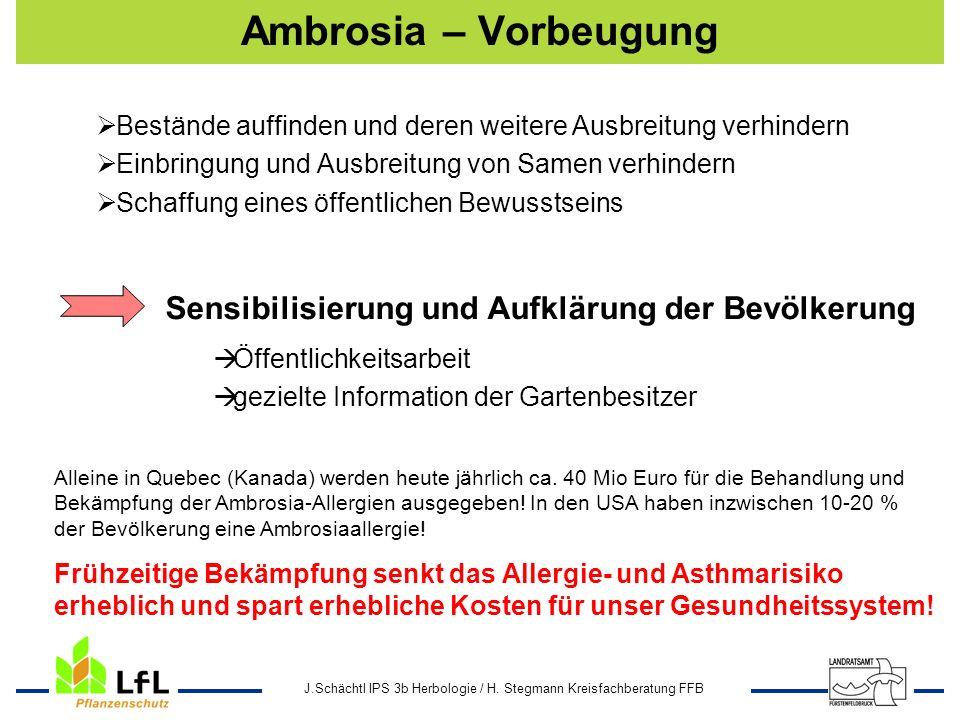 J.Schächtl IPS 3b Herbologie / H. Stegmann Kreisfachberatung FFB Ambrosia – Vorbeugung Bestände auffinden und deren weitere Ausbreitung verhindern Ein