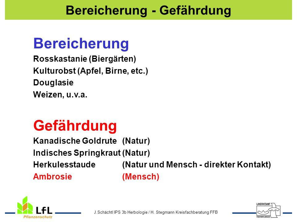 J.Schächtl IPS 3b Herbologie / H. Stegmann Kreisfachberatung FFB Bereicherung - Gefährdung Bereicherung Rosskastanie (Biergärten) Kulturobst (Apfel, B